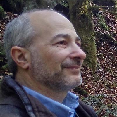 Gilles Rabinovitch