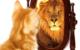 Atelier Hypose PTR : Confiance en soi